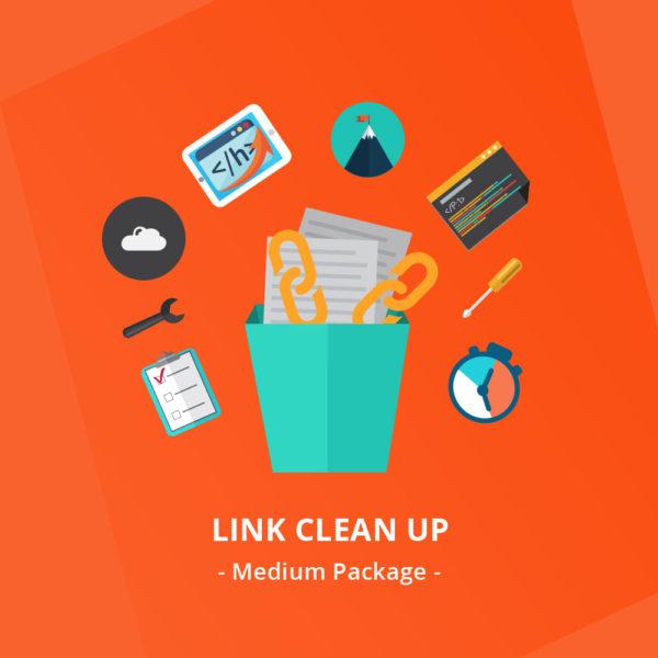 Link-Clean-Up--Medium-Package